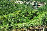 Vinhos da Montanha - Serra Gaúcha - Site Guiabento
